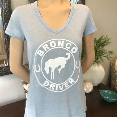 Bronco Driver Horse Art